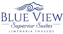 Blue View Logo Small